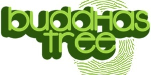 We stock 'Buddhas Tree ' products