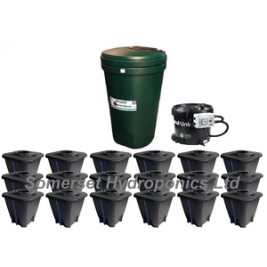 IWS Deep Water Culture 18 pot System