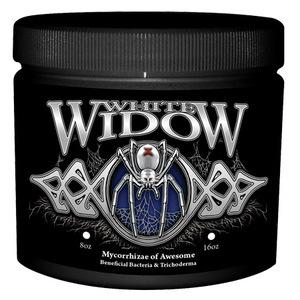 HUMBOLDT White Widow