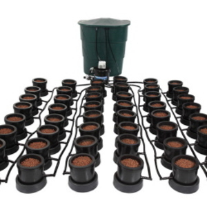 IWS Flood and Drain PRO Culture 48 pot system