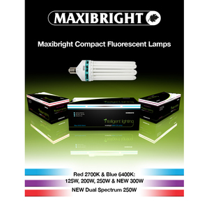 Maxibright CFL Lamps