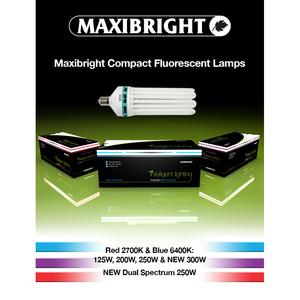 Maxibright CFL Lamps