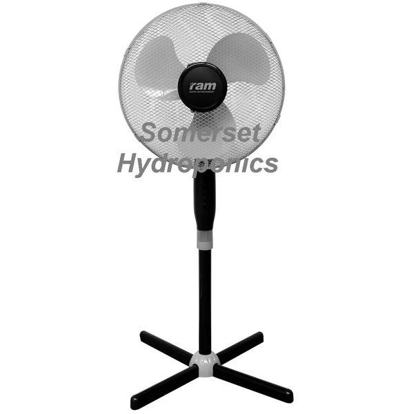 "RAM Pedestal Swing Fan 16"" (40cm) - Air Circulation Fans"