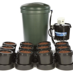 IWS Flood and Drain Culture 12pot - Plastic Tank - Flood & Drain Growing Systems