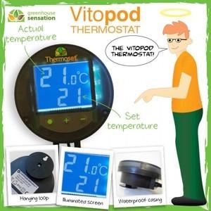 Vitopod Thermostat
