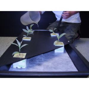 Nutriculture Spreader Mat in NFT system