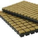 Grodan Rockwool Plugs Large 35x35x40mm (Box 18 Trays) - Rockwool Cubes