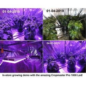 Cropmaster PRO 1000 Led