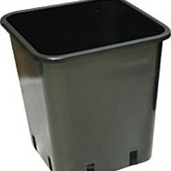 11ltr Premium Square Pot - Pots, Tanks & Trays