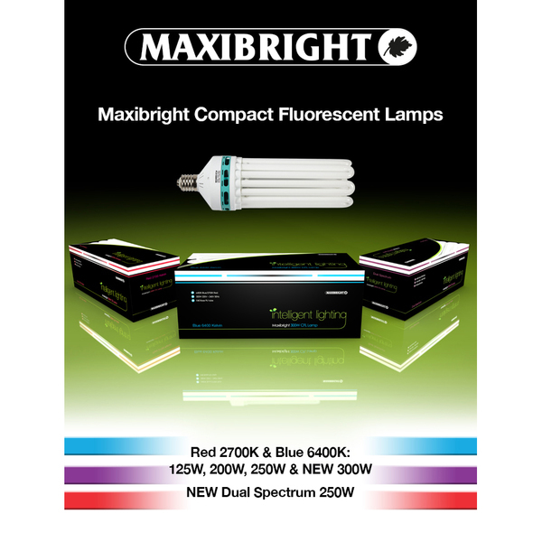 Maxibright Dual Spectrum 250watt CFL lamp - Fluorescent Grow Light Lamps
