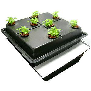 Propagation Grow Tent Kit 60x60x150cm T5 Grow Light Propagator Seedlings Plants