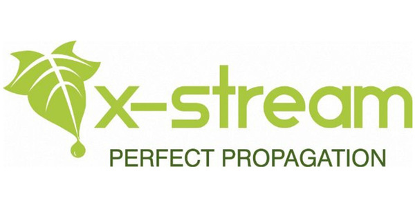 X stream.content