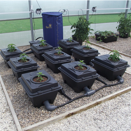 RUSH 10 Pot - 2 Lanes - 40ltr Tanks with 62cm Pot Centres - DWC Growing  Systems