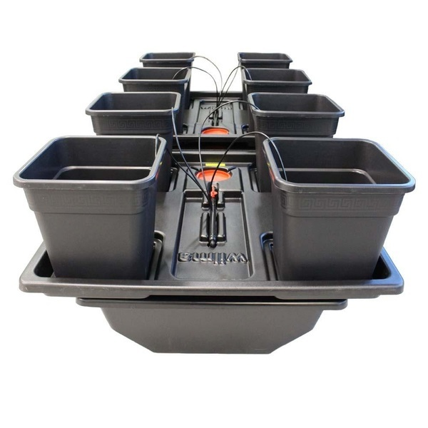 Wilma XL 8 pot Hydroponic Dripper system - Dripper Growing  Systems