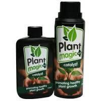 Plant Magic Plus Catalyst 250ml - Plant Enhancers (Grow)