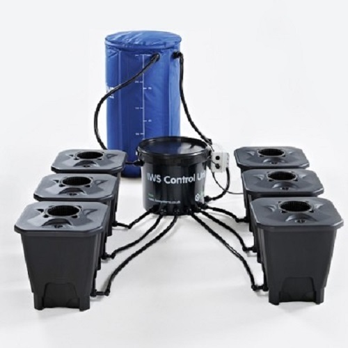 IWS DWC Systems - DWC Growing  Systems