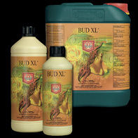 House & Garden Bud XL - Plant Enhancers (Bloom)