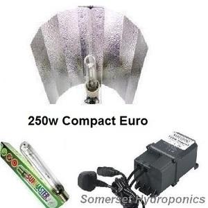250w compact euro