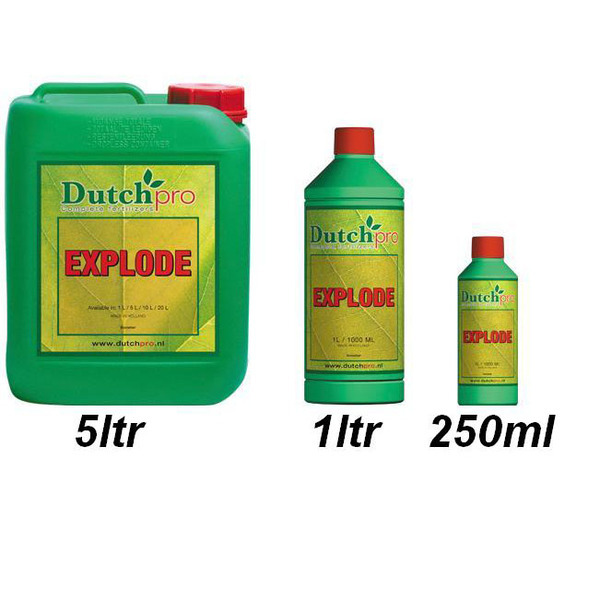 Dutch Pro Explode 250ml - Plant Enhancers (Bloom)